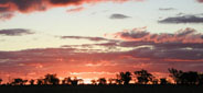 sunset Walgett